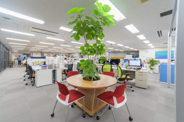 ドーナツ型(丸)テーブル 観葉植物収納