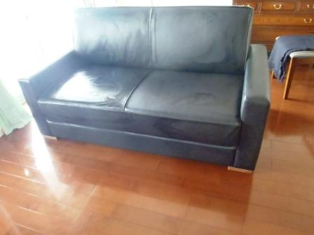 Davy 2 seater Sofabed